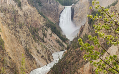 Yellowstone – Wyoming – Estados Unidos