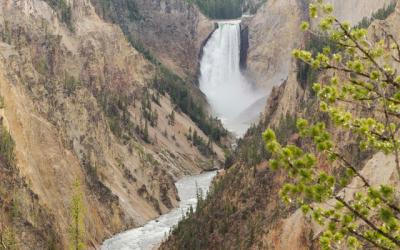Yellowstone – Wyoming – Estados Unidos