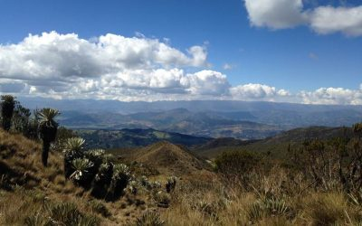 Páramo de Ocetá – Colombia