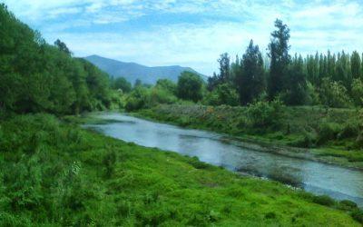 Río Angostura – Chile