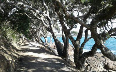 Mount Maunganui – Nueva Zelanda