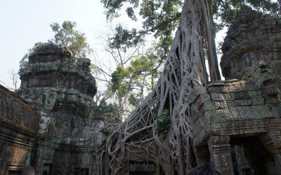 Templo Ta Prohm – Camboya