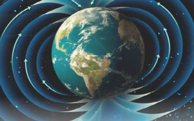 Un Mundo Mejor. Restaurar las redes planetarias