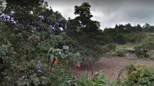 Guarne-Antioquia – Colombia